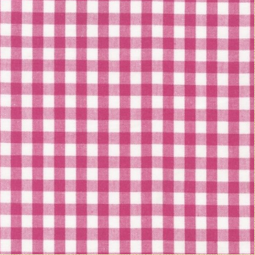Kona Colorworks 2 Hot Pink Gingham 1/4in APL-11217-118