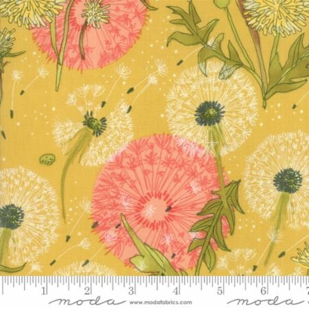 Dandi Annie Dandelion Dance Yellow Maize 48630-18